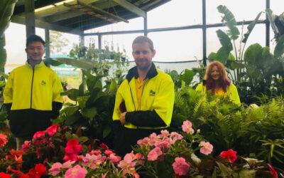 New Horticulture Apprenticeships