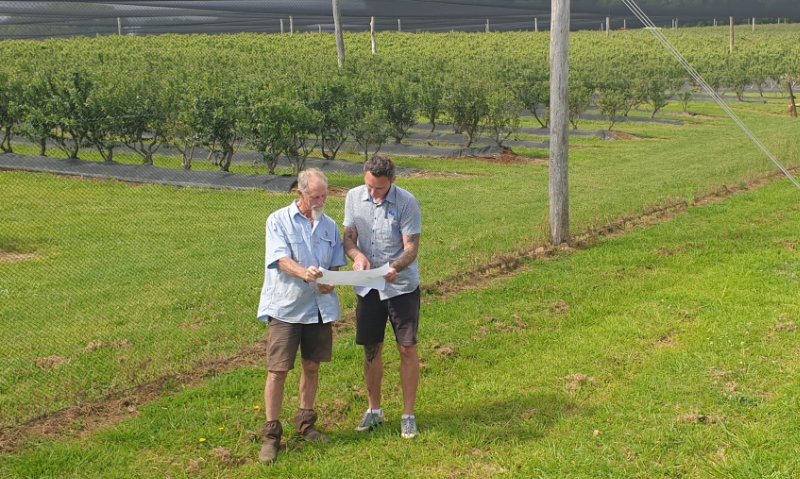 Apine Nurseries managers with plans