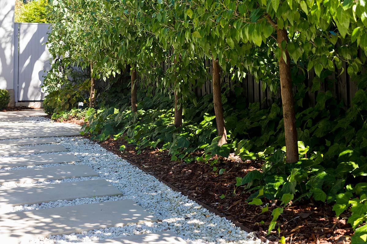 Get Smart Landscaping Mosman