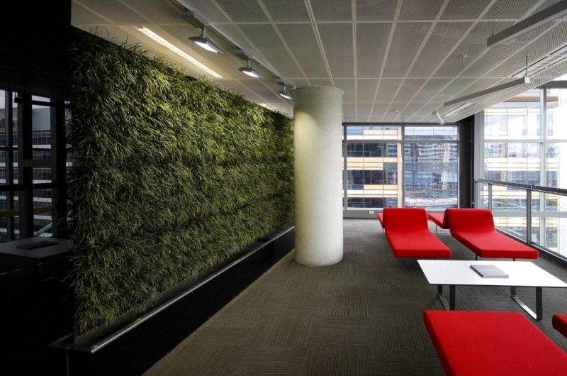 Green walls and roof gardens