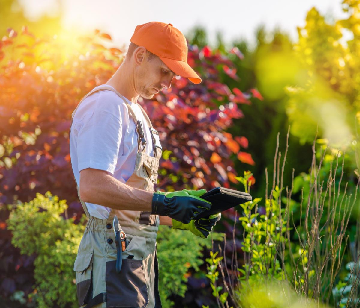 landscaper checking off plant list